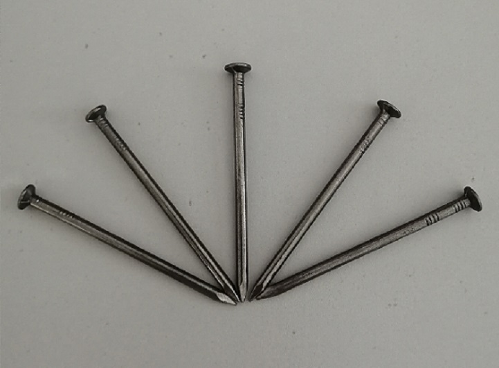 Bright Polished Common Wire Nail